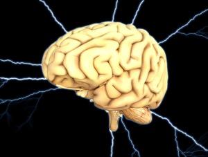 brain-1845940_1920